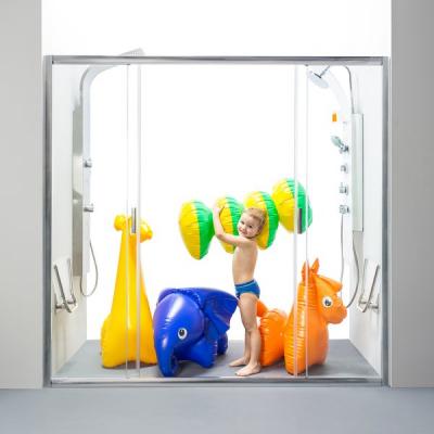 Душевые двери Ravak BLIX BLDP 4 - 200 полир.алюм.+Transparent, 0YVK0C00Z1